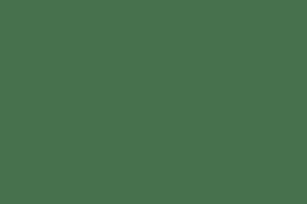 Stellar Redback Mens Shoe
